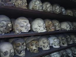 cranii